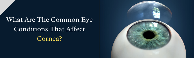 What Are The Common Eye Conditions That Affect Cornea